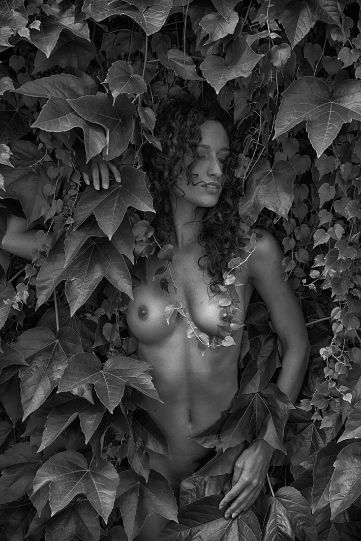 Ivy nymph 4
